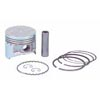 Piston & ring assembly .25mm