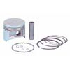 Piston & ring assembly .50mm